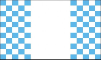Sky Blue and White Checkered Small Panel Flags (Sleeved)