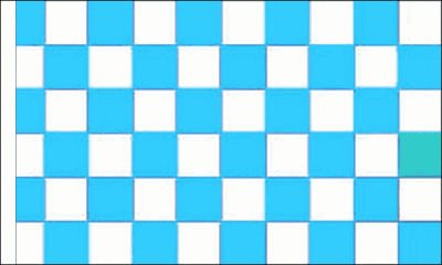 Sky Blue and White Check Flag (Sleeved)