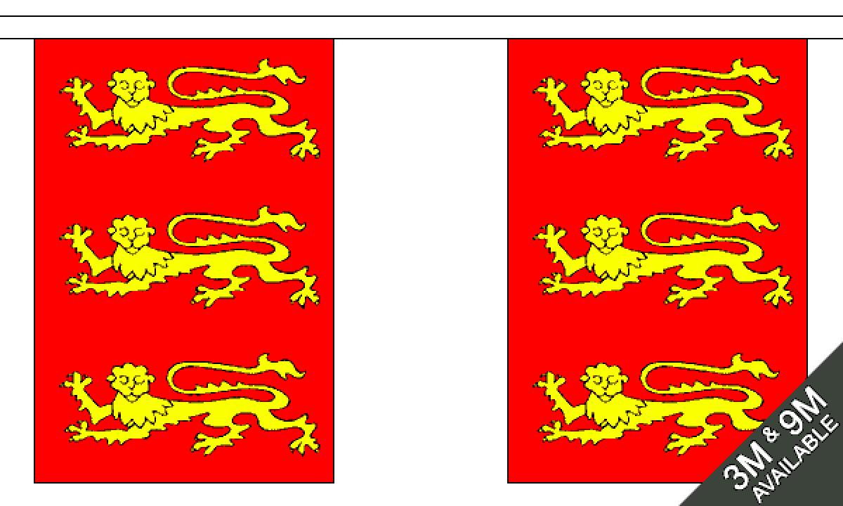 King Richard 1st Small Bunting